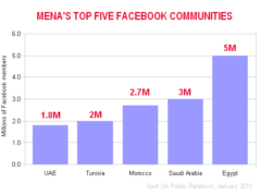 Egypt Facebook demographics