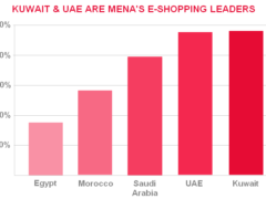 32% of MENA Internet users buy online